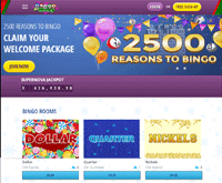 Bingo For Money Website