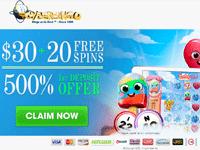 CyberBingo Promotion