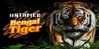 Untamed Bengal Tiger Free Slot
