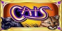 Cats Free Slot