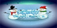 Winter Wonders free slot