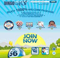 BingoSkyPrincipal