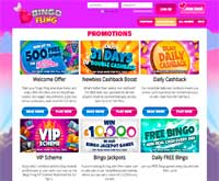 bingo fling promotions screenshot