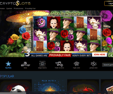 Cryptoslots slot game