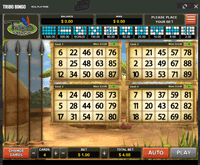Cafe Casino Games